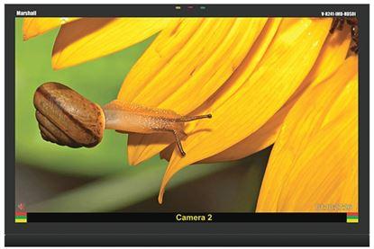 Image de V-R241-IMD-HDSDI 24' Native HD Res. LCD Monitor  HDSDI/SDI and IMD